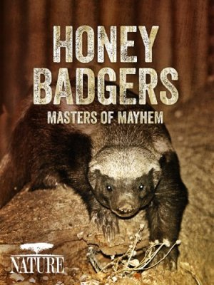 Bitėdžiai barsukai: chaoso meistrai / Honey Badgers: Masters of Mayhem (2014)